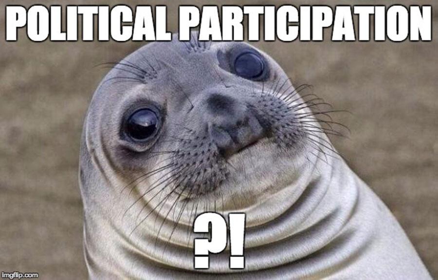 political patricipation_main image